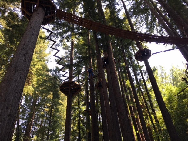 Neurosurgery_DURA_TeamActivities_RopesCourse_M
